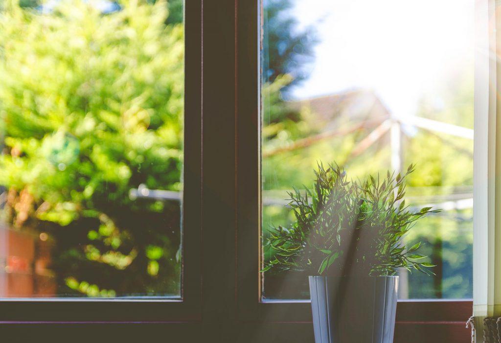 Window looking onto garden